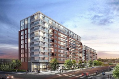 n4602075 1 250x250 385x258 - code3319-Rent-new barand -All Type condo-Vaughan